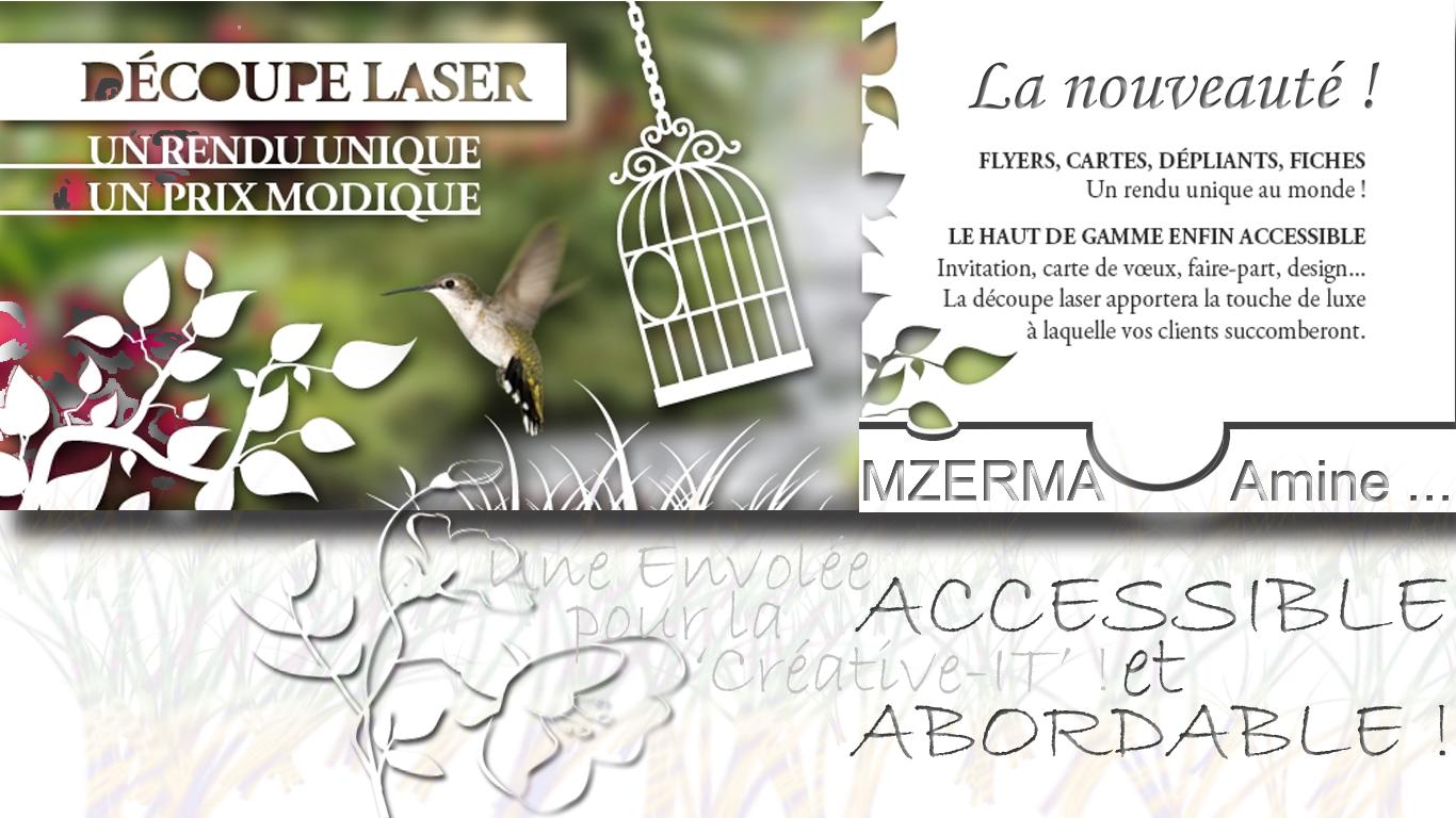 La_Decoupe-Laser